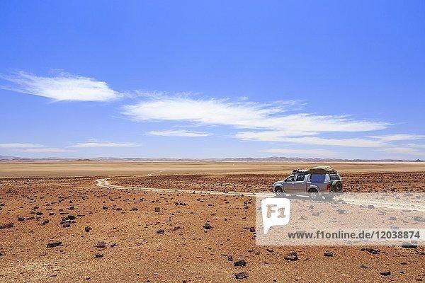 Geländewagen fährt durch Wüstenlandschaft nördlich des Hoanib Flusses  Damaraland  Region Kunene  Namibia  Afrika