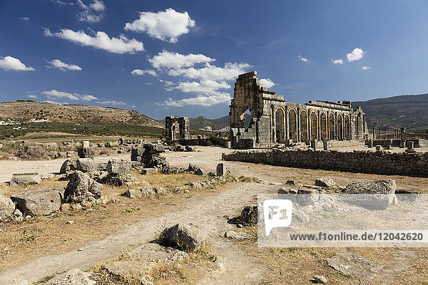 The Basilica at the Roman city of Volubilis  UNESCO World Heritage Site  near Moulay Idris  Meknes  Morocco  North Africa  Africa