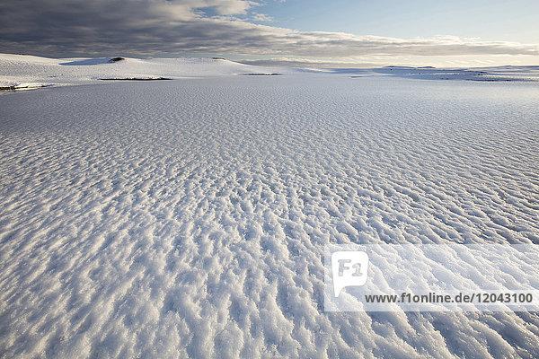 Snow covered landscape in winter  near Jokulsarlon  South Iceland  Polar Regions