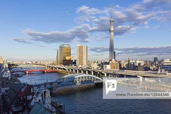 City skyline and Skytree on the Sumida River  Tokyo  Japan  Asia