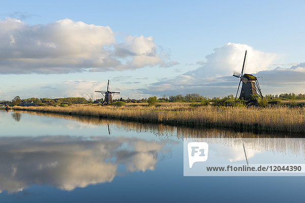 Windmills  Kinderdijk  UNESCO World Heritage Site  Netherlands  Europe