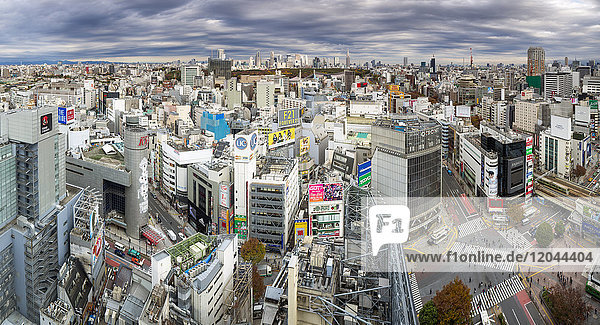 Elevated view over Shibuya Ward towards the Shinjuku skyline  Tokyo  Japan  Asia