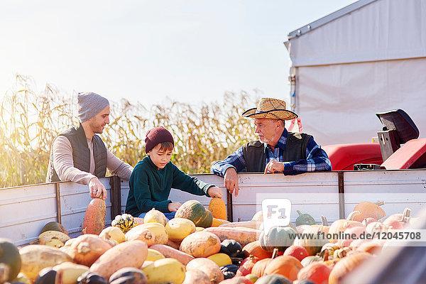 Bauern und Junge auf der Kürbisfarm