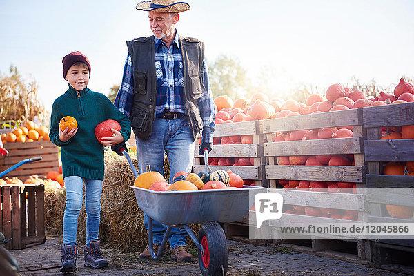 Landwirt und Enkel auf der Kürbisfarm