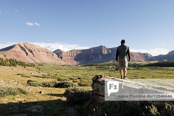 Männlicher Wanderer mit Blick auf Landschaft und Berge  Wasatch-Cache National Forest  Utah  USA