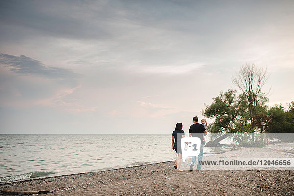 Rear view of couple strolling with toddler son on beach  Lake Ontario  Canada