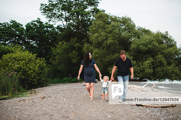 Pregnant couple strolling on beach with male toddler son  Lake Ontario  Canada