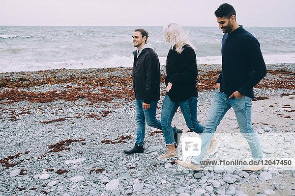 Volle Länge von glücklichen Freunden  die am Strand spazieren gehen.