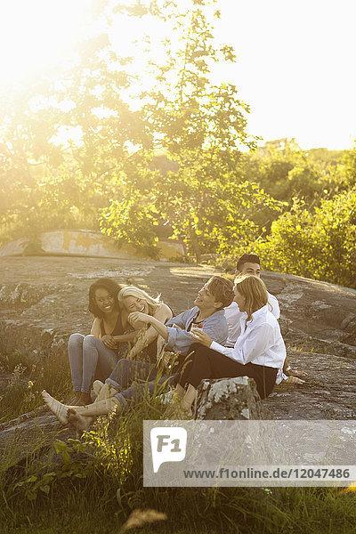Fröhliche Freunde sitzen an sonnigen Tagen auf einer Felsformation gegen Bäume.