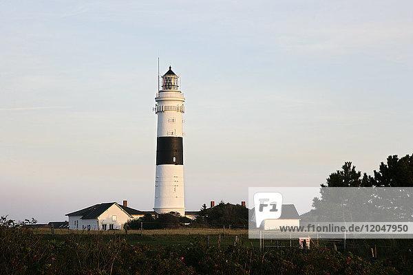 Lighthouse  Kampen  Sylt  Germany