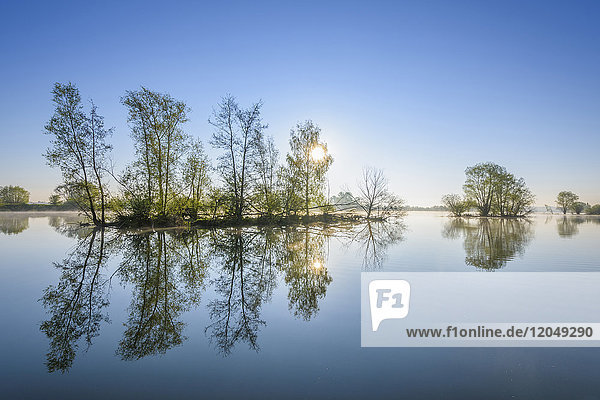 Lake with Island with Trees  Sun and Morning Mist  Streudorf  Lake Altmuhlsee  Weissenburg-Gunzenhausen  Bavaria  Germany