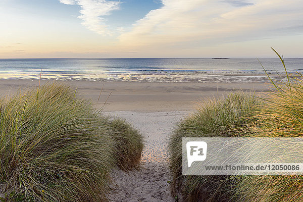 Path through sand dunes to the North Sea at dawn at Bamburgh in Northumberland  England  United Kingdom