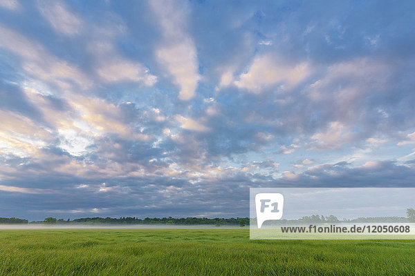 Spring landscape of field with cloudy sky in early morning Hesse  Germany