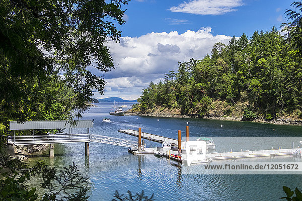 Boat Tours Run In And Out Of Butchart Cove  Vancouver Island; Victoria  British Columbia  Canada