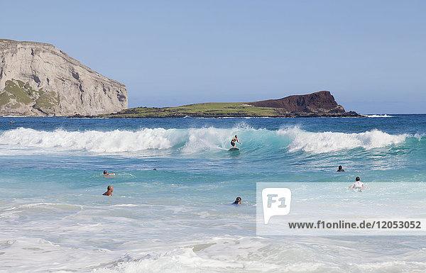 Bodyboarders catching waves at Makapu'u Beach; Waimanalo  Oahu  Hawaii  United States of America