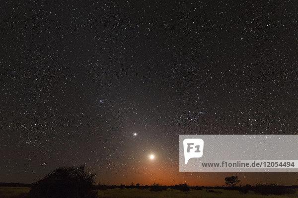 Namibia  Region Khomas  bei Uhlenhorst  Astrofoto  RIsing moon und Planet Venus eingebettet in glühendes Zodiakallicht im Morgengrauen  Sternbild Orion verkehrt herum