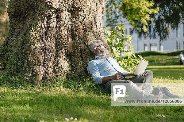Erwachsener Mann mit Laptop entspannt im Park