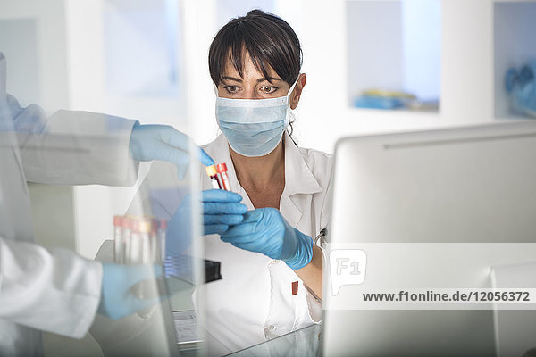 Woman receiving test tubes with liquid in laboratory