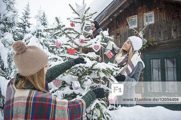 Österreich  Altenmarkt-Zauchensee  zwei junge Frauen schmücken Weihnachtsbaum im Holzhaus