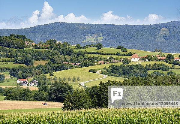 Deutschland  Rattiszell-Herrnfehlburg  Blick auf Schloss Herrnfehlburg