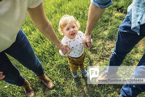 Süßer kleiner Junge hält Hände von Eltern auf der Wiese