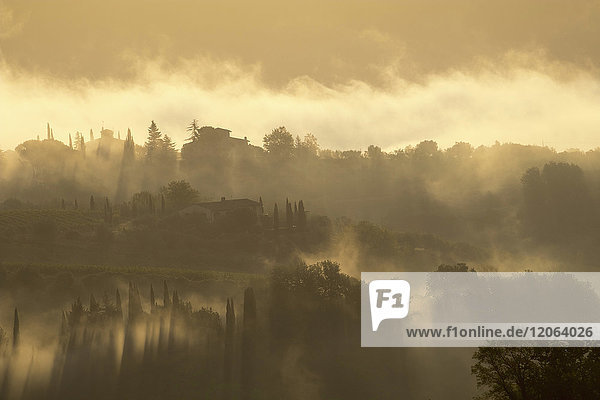 Early morning landscape with fog on the Val di Pesa in Tuscany