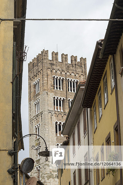 Bell tower and residential buildings  Lucca  Tuscany  Italy