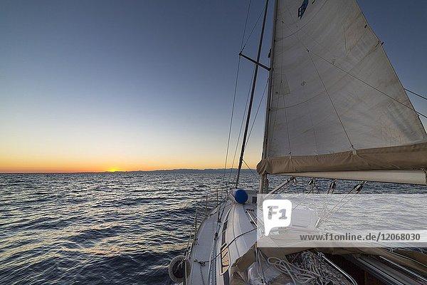 Sailing during the sunset (Ligurian Sea  Mediterranean Sea  Italy  Europe).