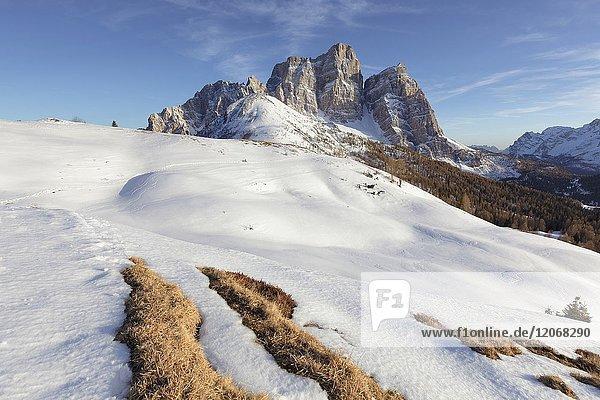 North-west wall of the mount Pelmo from Alpe Prendera in winter  Col Roan  Dolomites  Borca di Cadore  Belluno  Veneto  Italy.