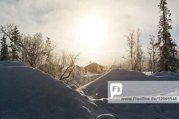 Winter sunset in Harjedalen  Sweden