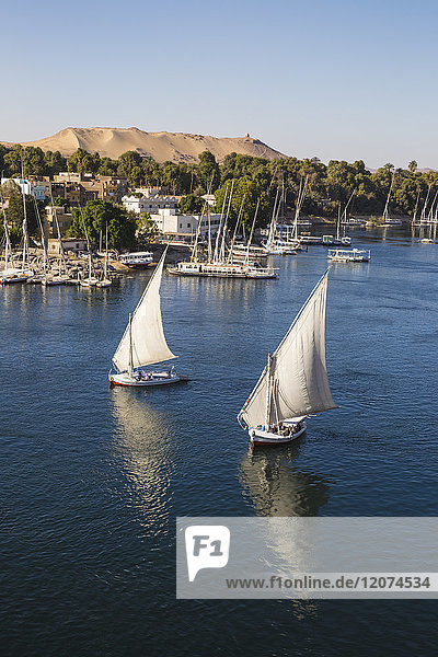 View of The River Nile and Nubian village on Elephantine Island  Aswan  Upper Egypt  Egypt  North Africa  Africa