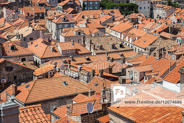 Looking across Dubrovnik's terracotta tiled rooftops  Dubrovnik  Croata  Europe