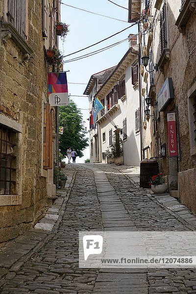 Hill village of Groznjan  Istra Peninsula  Croatia  Europe