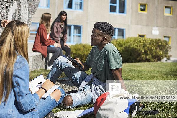 Junge Freunde studieren  während Freunde der Universität auf dem Campus reden.