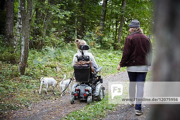 Rückansicht des jungen Hausmeisters mit behinderter Frau und Hund im Wald