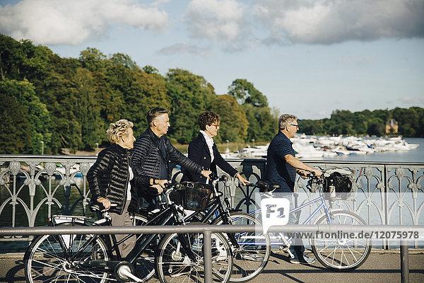 Seniorenfreunde mit Fahrrädern auf der Brücke über dem Fluss