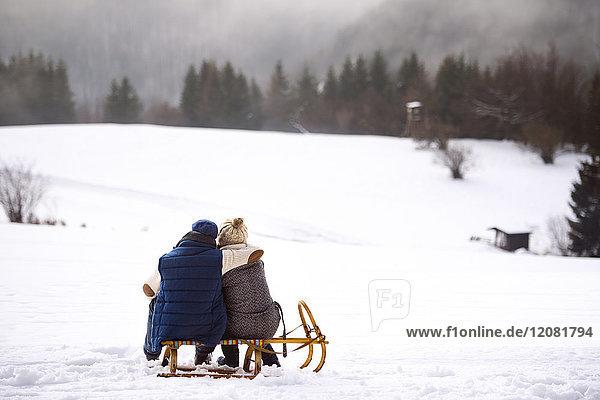 Rückansicht des Seniorenpaares nebeneinander auf dem Schlitten in verschneiter Landschaft