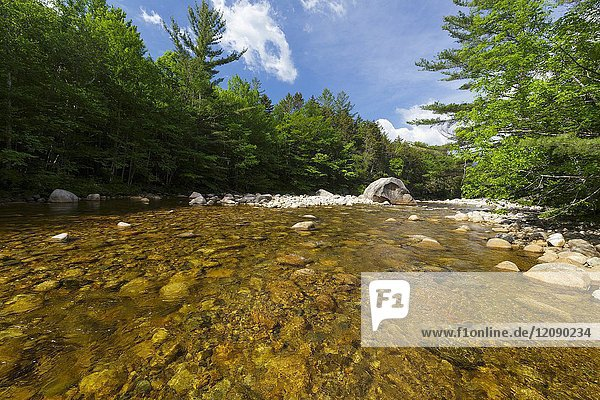 The East Branch of the Pemigewasset River in the Pemigewasset Wilderness of Lincoln  New Hampshire USA during the spring months. At 45 000 acres  the Pemigewasset Wilderness is the largest designated wilderness in New Hampshire. And this area was logged during the East Branch & Lincoln Railroad era (1893 -1948).