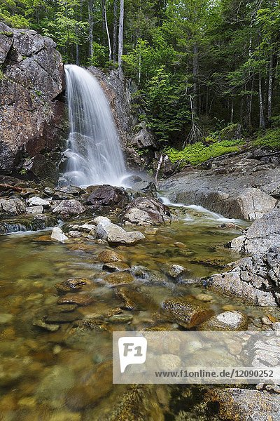 Thirteen Falls along Franconia Brook in the Pemigewasset Wilderness of Franconia  New Hampshire during the summer months. These remote waterfalls are located near Thirteen Falls Tentsite.