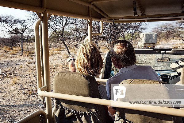 Couple on Game Drive in Onguma Game Reserve  Namibia  Africa.