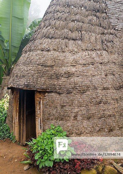 Traditional Dorze house made of bamboo and enset leaves  Gamo Gofa Zone  Gamole  Ethiopia.