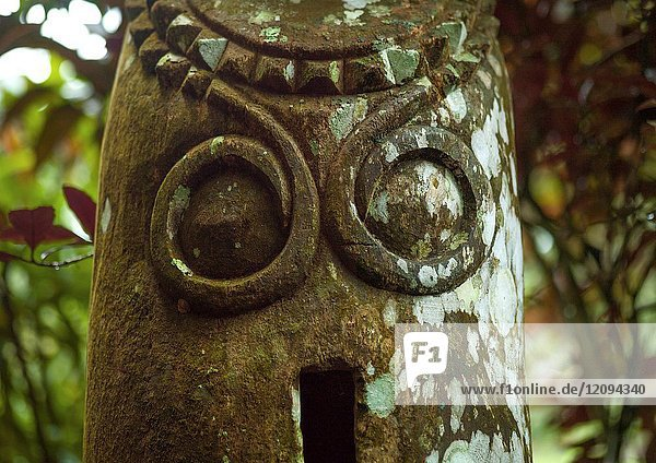 Wild pig tusks carved on a slit gong drum  Ambrym island  Olal  Vanuatu.