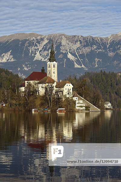 View of Lake Bled and the Church of Mary the Queen  located on a small island in the middle of the lake  Bled  Slovenia.