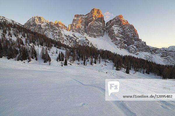 Winter sunset on Mount Pelmo  Dolomites  Fiorentina Valley  Borca di Cadore  Veneto  Italy.