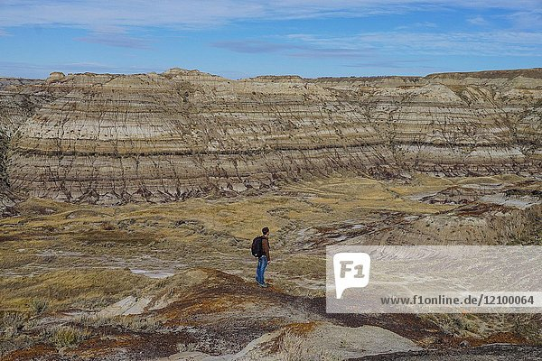 A Man Looks Out Over Horsethief Canyon in the Canadian Badlands of Drumheller  Alberta.