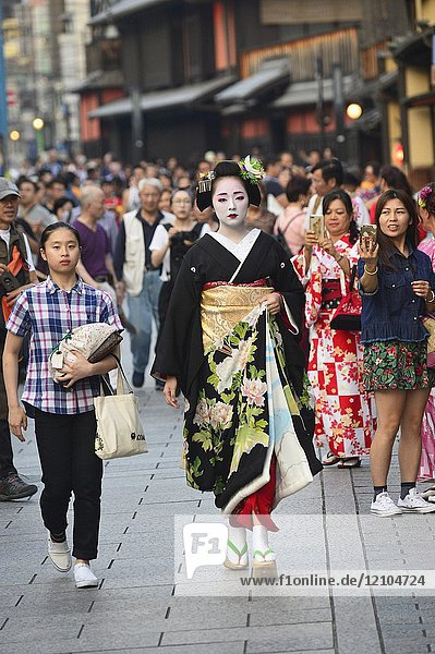 A geisha walking to her appointment in a teahouse in Gion district  Kyoto  Japan  Asia.