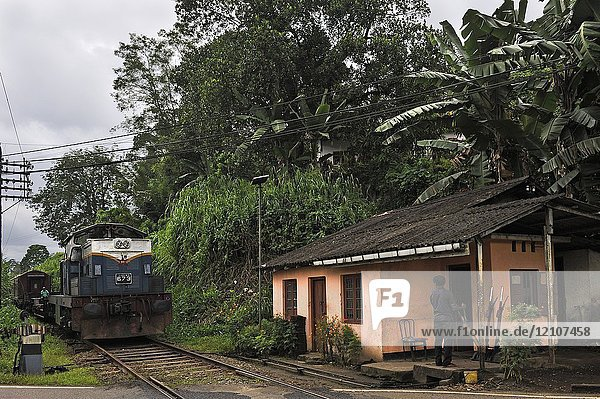Level-crossing keeper house in a mountain city  center of the island  road from Hatton to Kandy  Sri Lanka  Indian subcontinent  South Asia.
