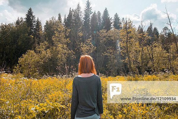 Woman standing in field  looking at view  rear view  Ural  Chelyabinsk  Russia  Europe