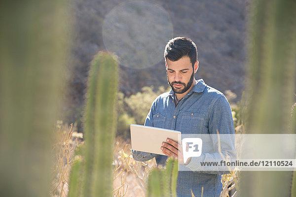 Junger männlicher Wanderer betrachtet digitales Tablett im sonnenbeschienenen Tal  Las Palmas  Kanarische Inseln  Spanien