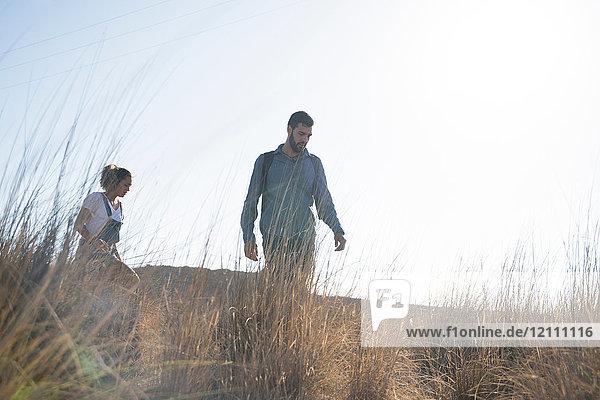 Junges Wanderpaar wandert durch langes Gras  Las Palmas  Kanarische Inseln  Spanien
